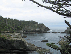 Cape Flattery, Washington. Photo © Susan Bernstein