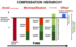 Compensation hierarchy (click to enlarge).